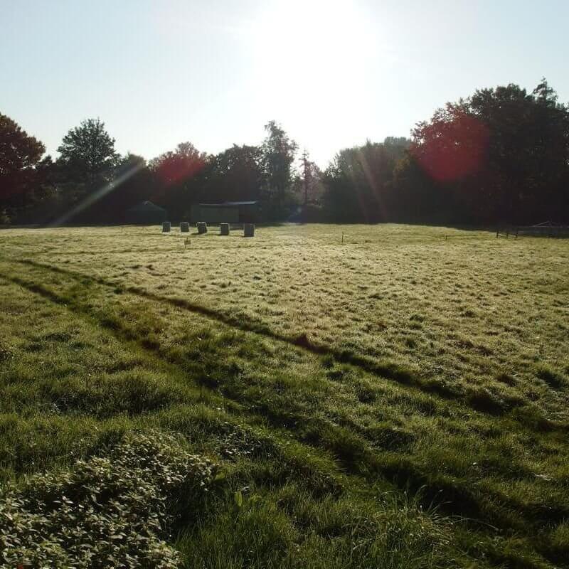 AbenteuerLernen.net intuitives Bogenschießen Tageskurse für Anfänger Bogenplatz am Kloster Langwaden bei Duesseldorf